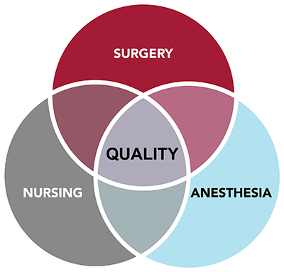 Venn Diagram: Surgery, Nursing, Anesthesia
